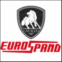 AUTOTRASPORTI CAVALLO GIORDANO & VALLAURI S.P.A.
