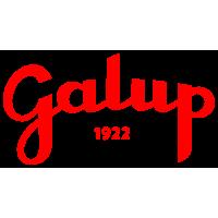 GALUP S.R.L. A SOCIO UNICO